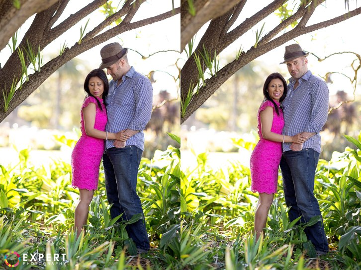 Neil-and-Wendy-engagement-montage-12